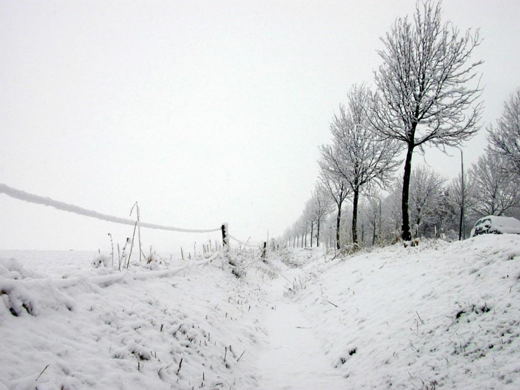 Les activités à faire en hiver