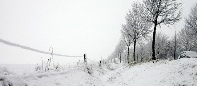 5 idées d'activités à faire en hiver !