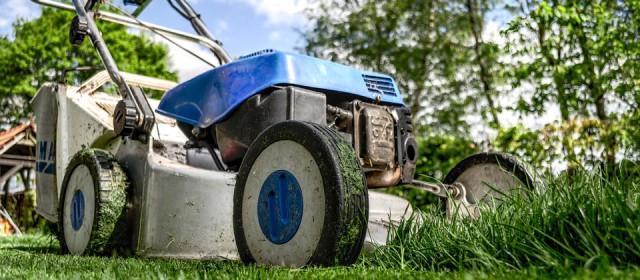 Jardin écologique: 3 astuces pour transformer le vôtre