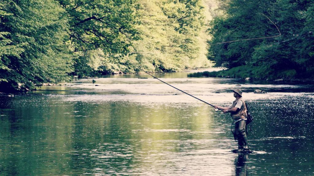Voici les 5 étapes pour devenir un pro de la pêche à la mouche !